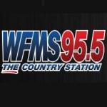 Logo da emissora Radio WFMS 95.5 FM