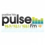 Logo da emissora Radio WHPZ Pulse 96.9 FM