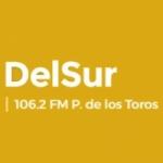 Logo da emissora Radio DelSur 106.2 FM