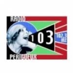 Logo da emissora Radio Périgueux 102.3 FM
