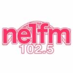 Logo da emissora Radio NE1 102.5 FM