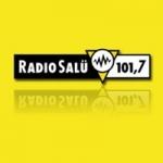 Logo da emissora Salü 101.7 FM