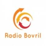 Logo da emissora Radio Bovril 103.5 FM