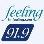 Logo da emissora Radio Feeling 91.9 FM
