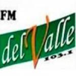 Logo da emissora Radio Del Valle 103.1 FM