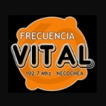 Logo da emissora Radio Frecuencia Vital 102.7 FM