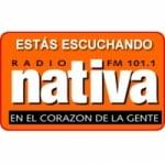 Logo da emissora Radio Nativa 101.1 FM