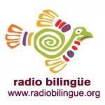 Logo da emissora Radio KSJV 91.5 FM