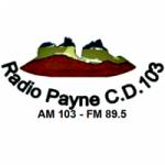 Logo da emissora Radio Payne 89.5 FM