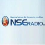 Logo da emissora Radio NSE 107.3 FM