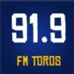 Logo da emissora Radio 91.9 FM Toros