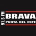 Logo da emissora Radio Brava 91.5 FM