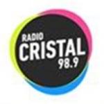 Logo da emissora Radio Cristal 98.9 FM