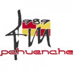 Logo da emissora Radio Pehuenche 98.9 FM