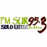 Logo da emissora Radio Sur 95.3 FM