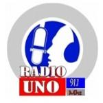 Logo da emissora Radio Uno 91.1 FM