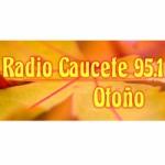 Logo da emissora Radio Caucete 95.1 FM