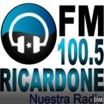 Logo da emissora Radio Ricardone 100.5 FM