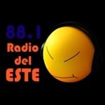 Logo da emissora Radio Del Este 88.1 FM