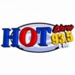 Logo da emissora Radio Hot Stereo 93.5 FM
