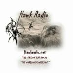 Logo da emissora Hawk Radio