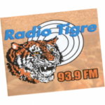 Logo da emissora Radio Tigre 93.9 FM