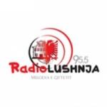 Logo da emissora Radio Lushnja 95.5 FM