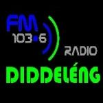 Logo da emissora Diddeleng 103.6 FM