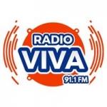Logo da emissora Radio Viva 91.1 FM