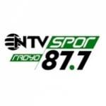 Logo da emissora NTV Radio 87.7 FM