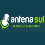 Logo da emissora Radio Antena Sul 95.5 FM