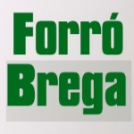 Logo da emissora Rádio Forró Brega FM