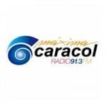 Logo da emissora Radio Maxima Caracol 91.3 FM