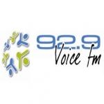 Logo da emissora Radio Voice 92.9 FM