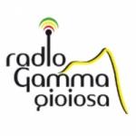 Logo da emissora Gamma Gioiosa Golden Hits 94.5 FM
