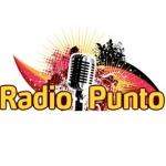 Logo da emissora Punto 88.1 FM