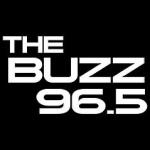 Logo da emissora Radio KRBZ The Buzz 96.5 FM