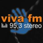 Logo da emissora Radio Viva 95.3 FM