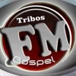 Logo da emissora Rádio Tribus FM 91.5