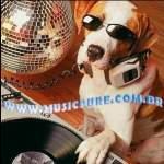 Logo da emissora Musicpure