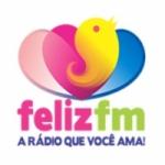 Logo da emissora Rádio Vida 91.3 FM