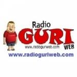 Logo da emissora Rádio Guri Web