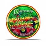 Logo da emissora Rádio Estação Reggae