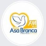Logo da emissora Rádio Asa Branca 91.5 FM