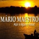 Logo da emissora Mário Maestro