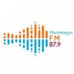 Logo da emissora Rádio Montenegro 87.9 FM