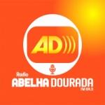 Logo da emissora Rádio Abelha Dourada 104.9 FM