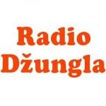 Logo da emissora Rádio Dzungla 103.6 FM
