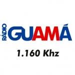 Logo da emissora Rádio Guamá 1160 AM
