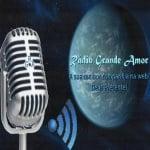 Logo da emissora Rádio Grande Amor